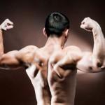 krachttraining schema voor spiermassa