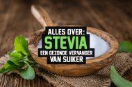 Alles over Stevia, een gezonde vervanger van suiker
